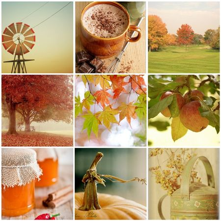 Autumn comes softly