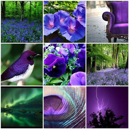Emerald and Purple
