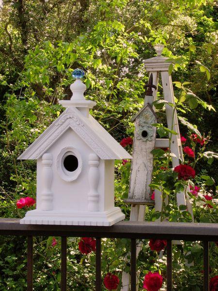 Bird house sm