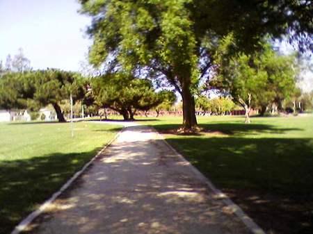 Mitchelpark